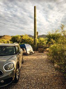 Kemping w Saguaro NP
